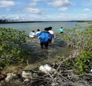 BAMSI studies ecological impacts of London Creek